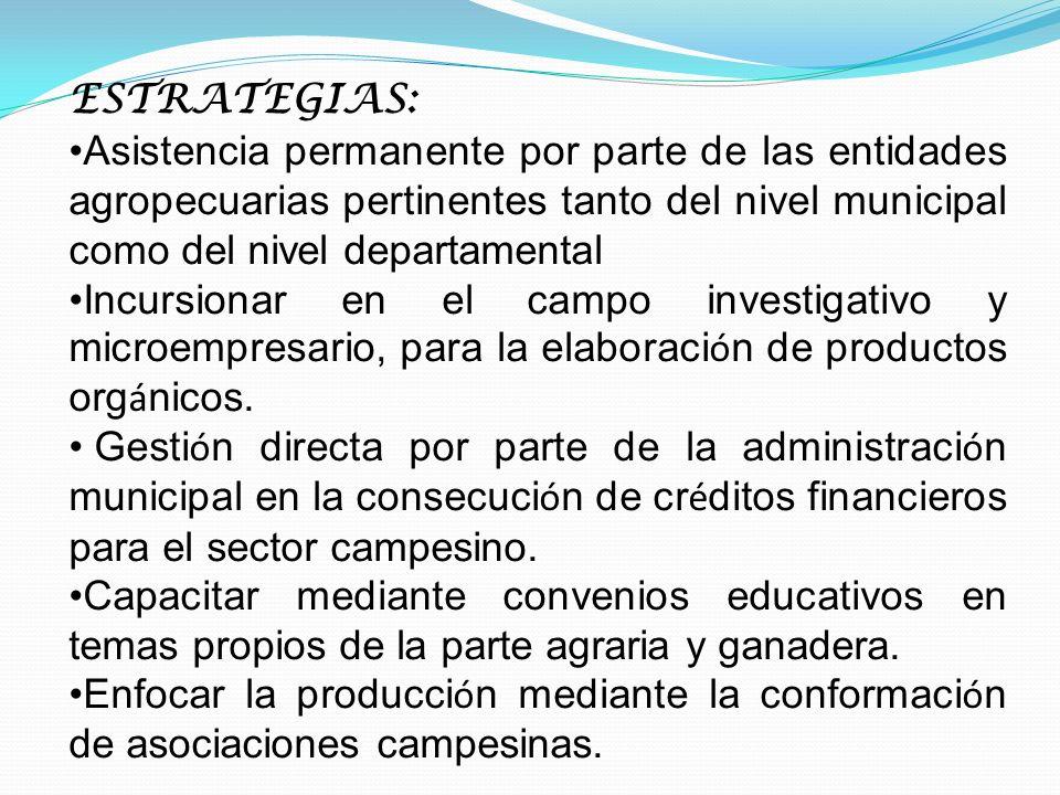 ESTRATEGIAS: Asistencia permanente por parte de las entidades agropecuarias pertinentes tanto del nivel municipal como del nivel departamental.