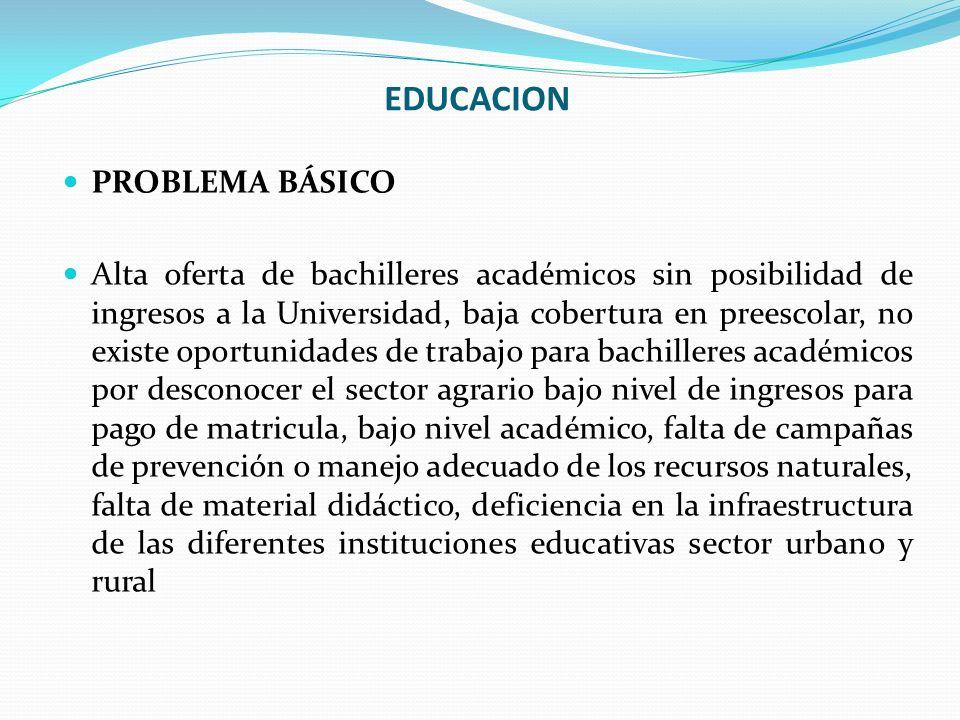 EDUCACION PROBLEMA BÁSICO