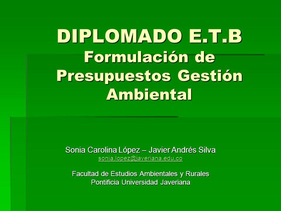 DIPLOMADO E.T.B Formulación de Presupuestos Gestión Ambiental