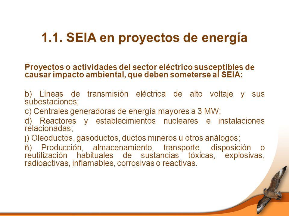 1.1. SEIA en proyectos de energía