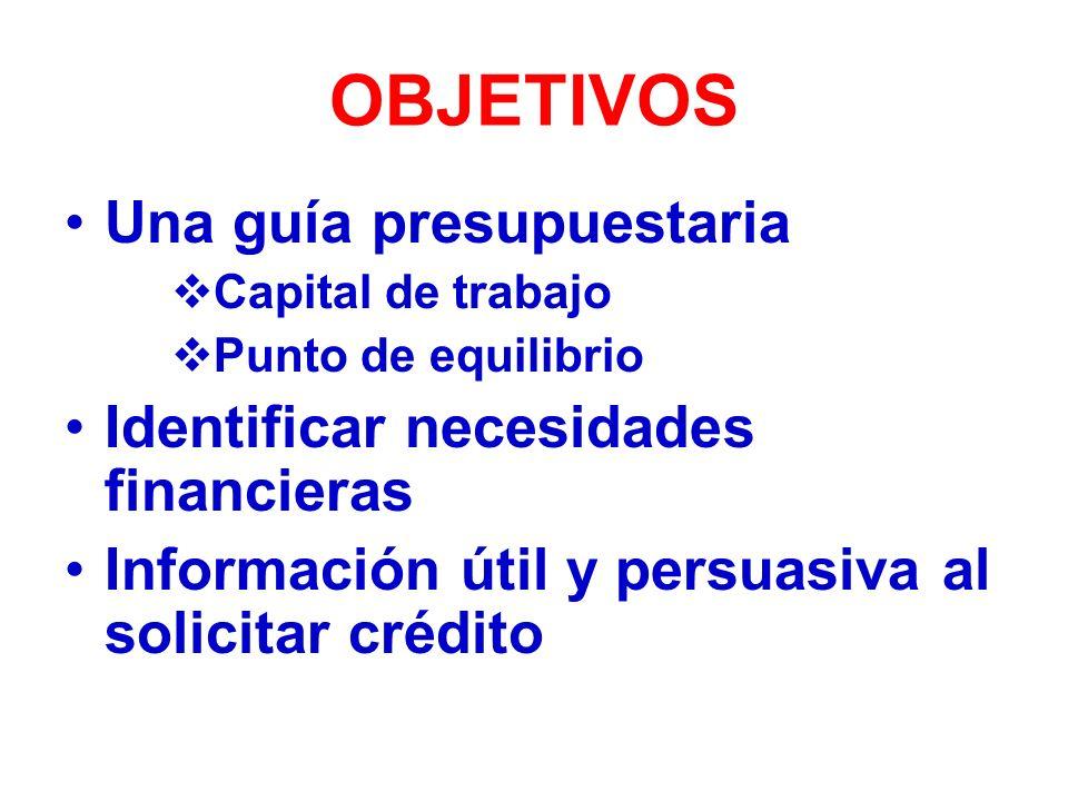 OBJETIVOS Una guía presupuestaria Identificar necesidades financieras