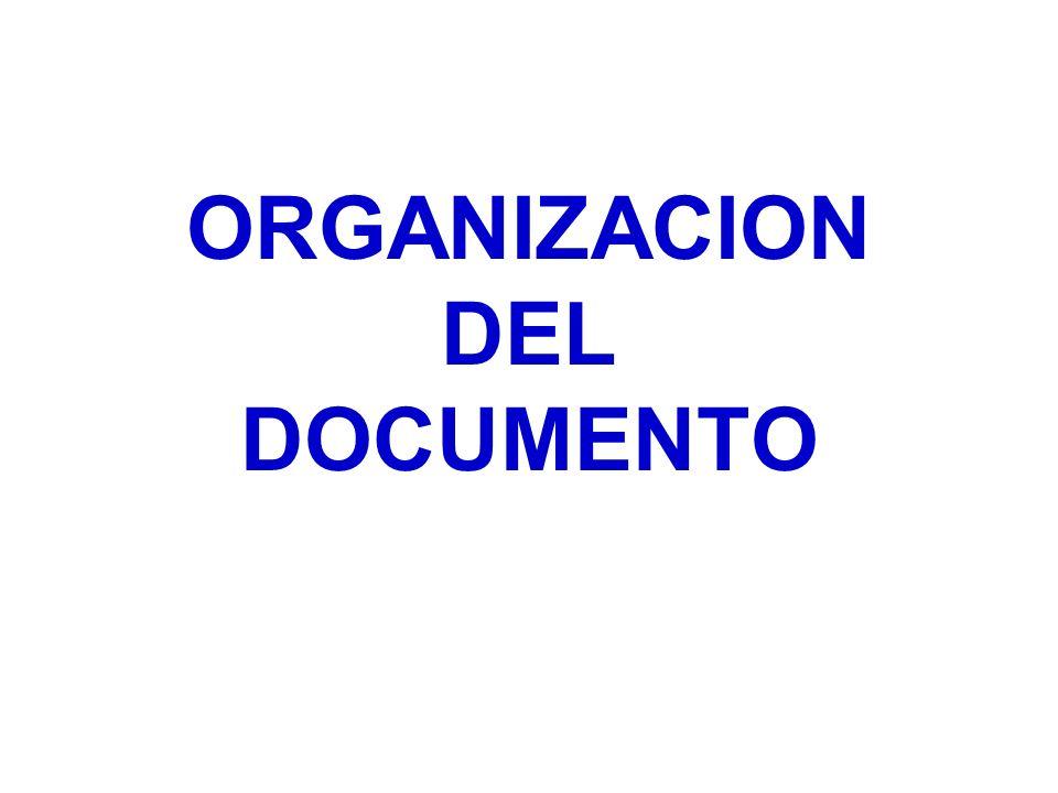 ORGANIZACION DEL DOCUMENTO