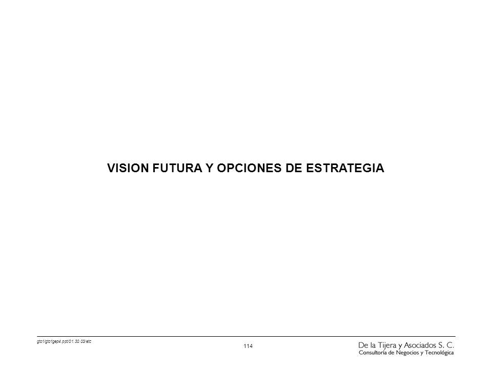 VISION FUTURA Y OPCIONES DE ESTRATEGIA