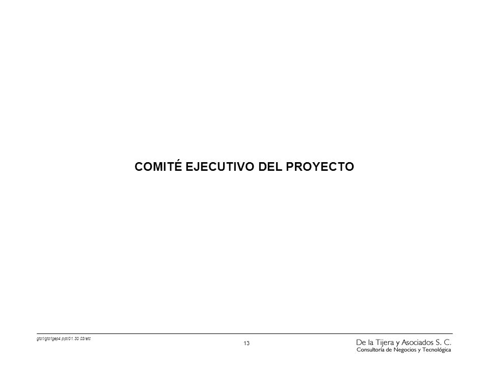 COMITÉ EJECUTIVO DEL PROYECTO