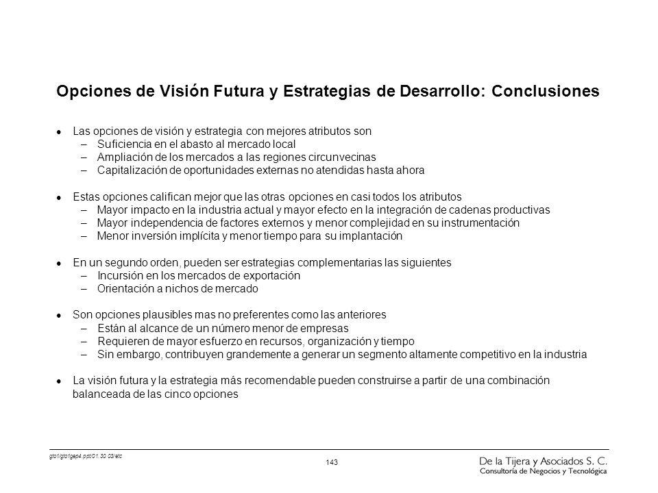 Opciones de Visión Futura y Estrategias de Desarrollo: Conclusiones