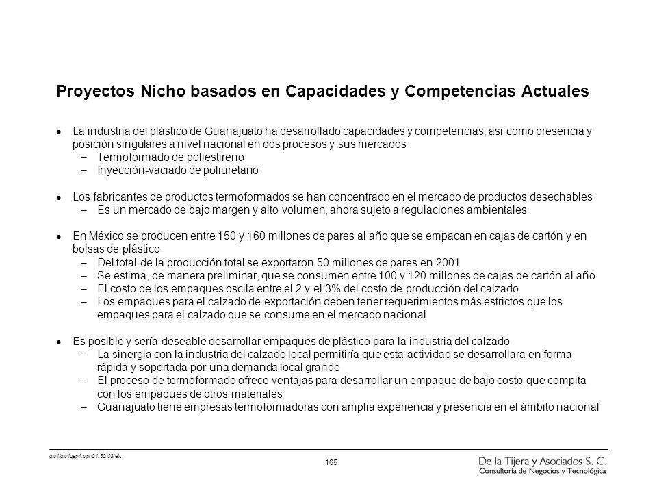 Proyectos Nicho basados en Capacidades y Competencias Actuales