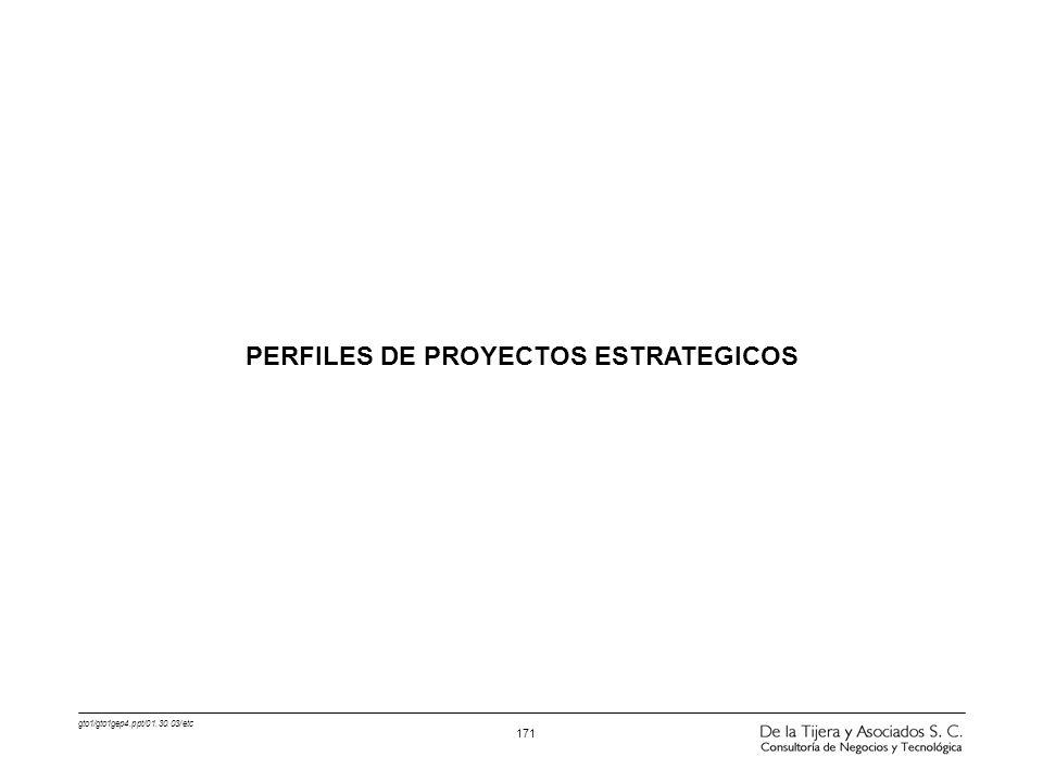 PERFILES DE PROYECTOS ESTRATEGICOS
