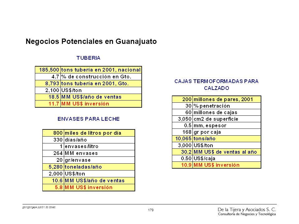 Negocios Potenciales en Guanajuato