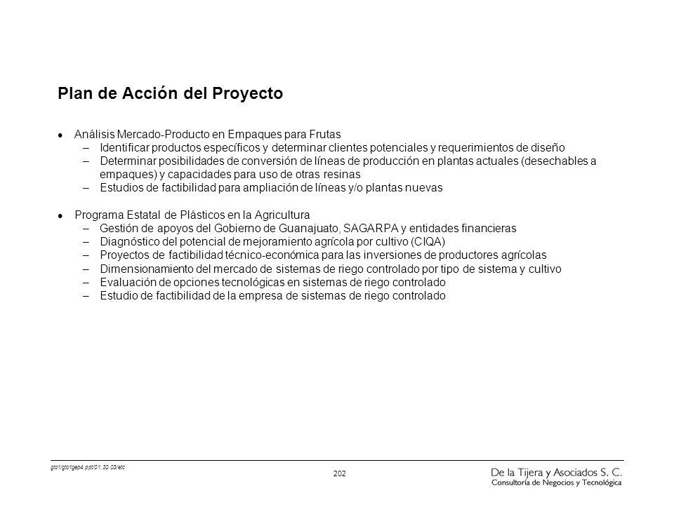 Plan de Acción del Proyecto