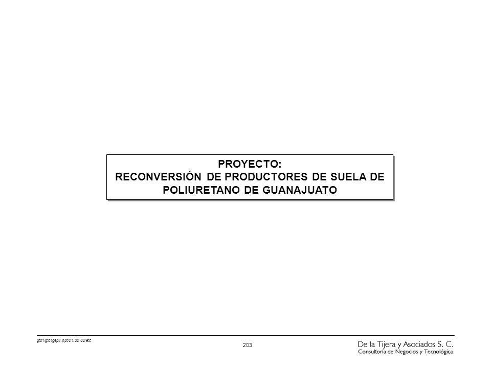 RECONVERSIÓN DE PRODUCTORES DE SUELA DE POLIURETANO DE GUANAJUATO
