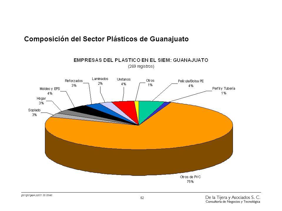 Composición del Sector Plásticos de Guanajuato