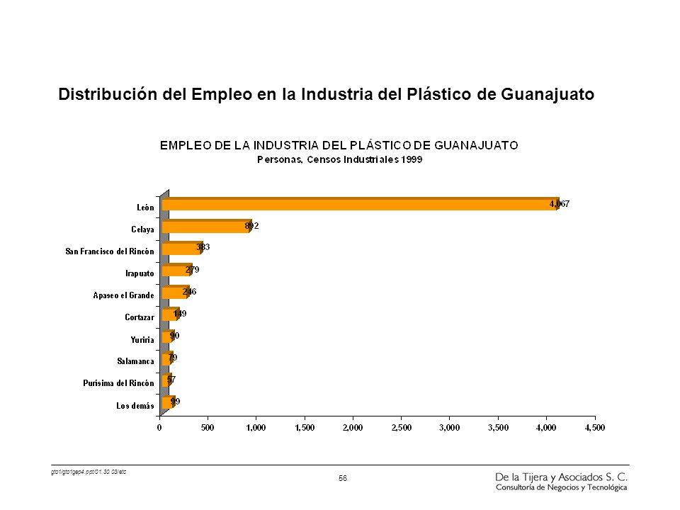 Distribución del Empleo en la Industria del Plástico de Guanajuato