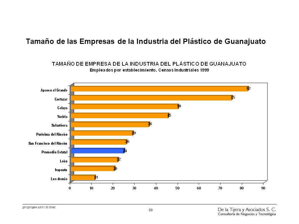 Tamaño de las Empresas de la Industria del Plástico de Guanajuato