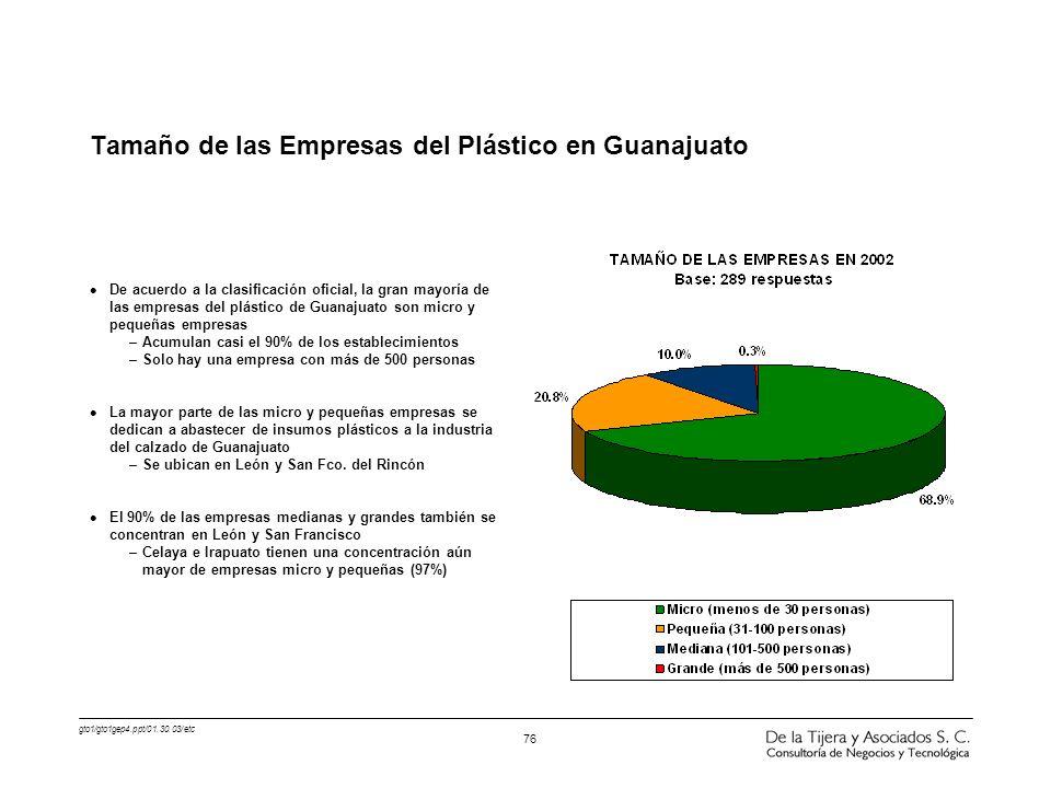 Tamaño de las Empresas del Plástico en Guanajuato