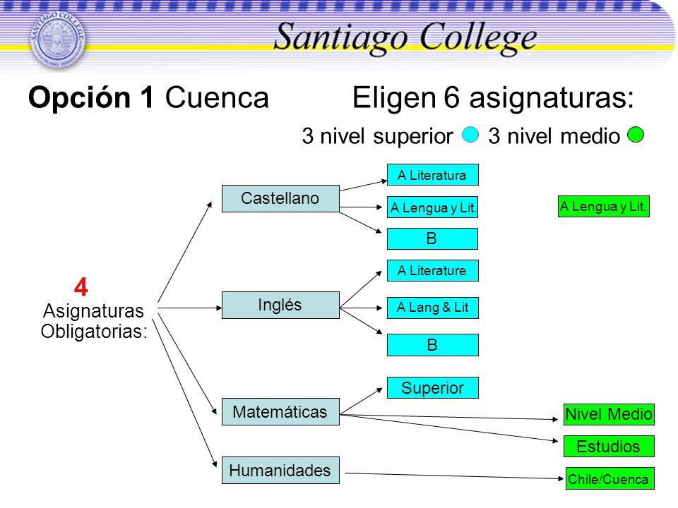 Opción 1 Cuenca Eligen 6 asignaturas: 3 nivel superior 3 nivel medio