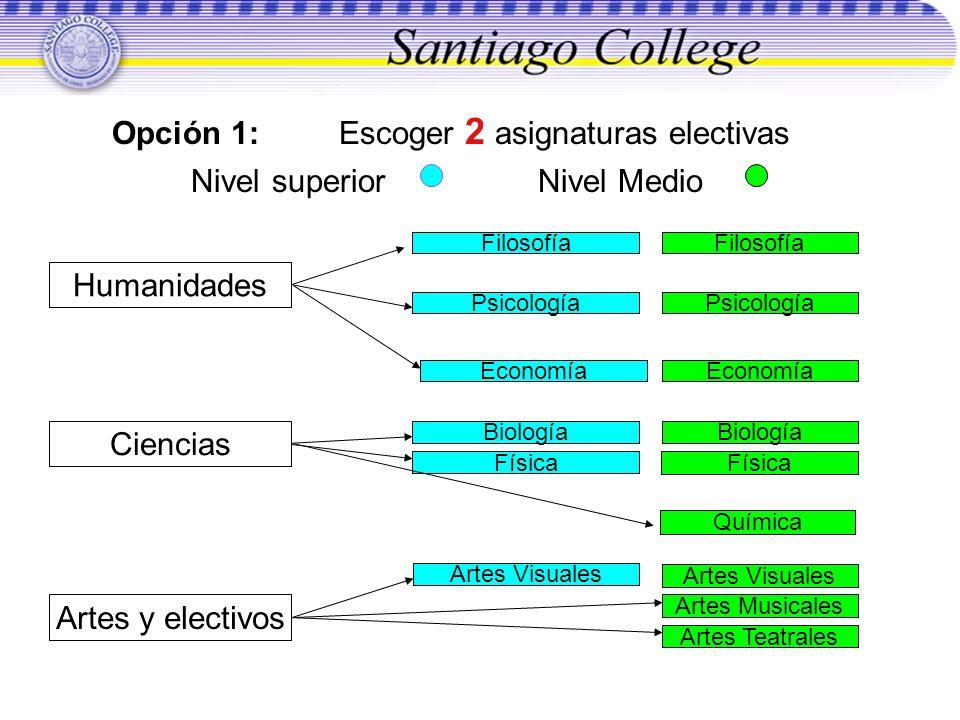 Opción 1: Escoger 2 asignaturas electivas Nivel superior Nivel Medio