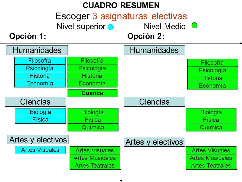 CUADRO RESUMEN Escoger 3 asignaturas electivas Nivel superior Nivel Medio