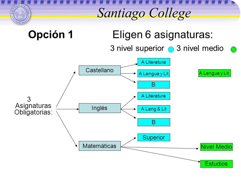 Opción 1 Eligen 6 asignaturas: 3 nivel superior 3 nivel medio