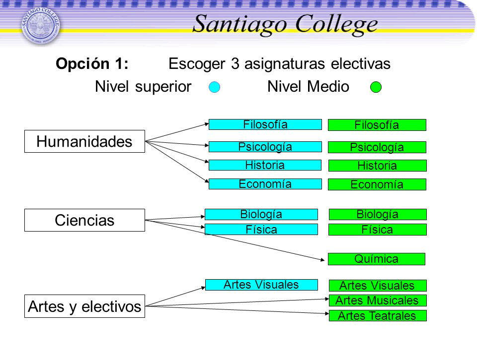 Opción 1: Escoger 3 asignaturas electivas Nivel superior Nivel Medio