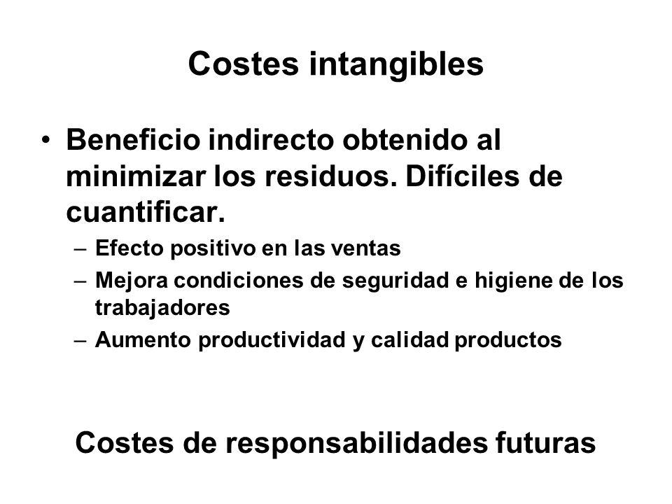 Costes de responsabilidades futuras