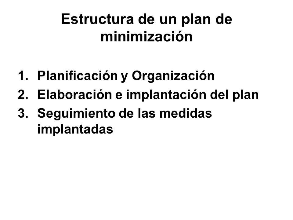 Estructura de un plan de minimización