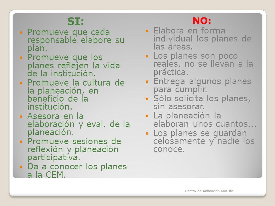 SI: NO: Promueve que cada responsable elabore su plan.