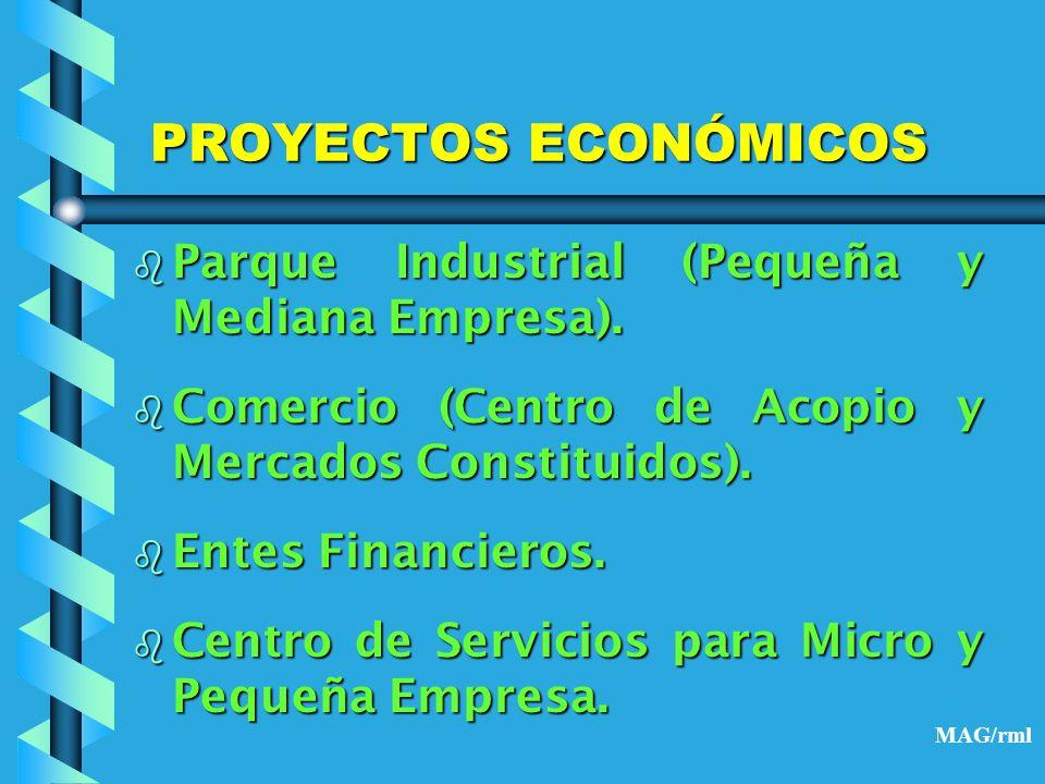 PROYECTOS ECONÓMICOS Parque Industrial (Pequeña y Mediana Empresa).