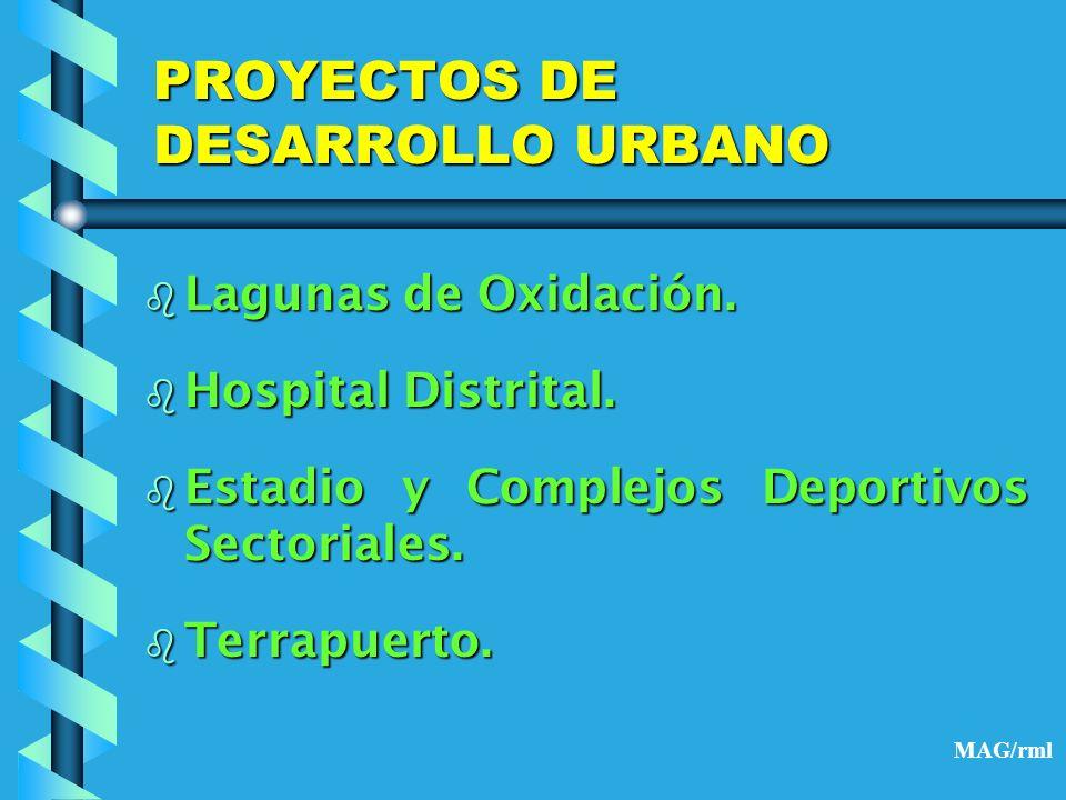 PROYECTOS DE DESARROLLO URBANO