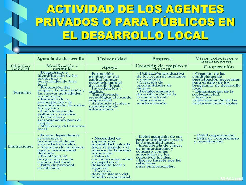 ACTIVIDAD DE LOS AGENTES PRIVADOS O PARA PÚBLICOS EN EL DESARROLLO LOCAL