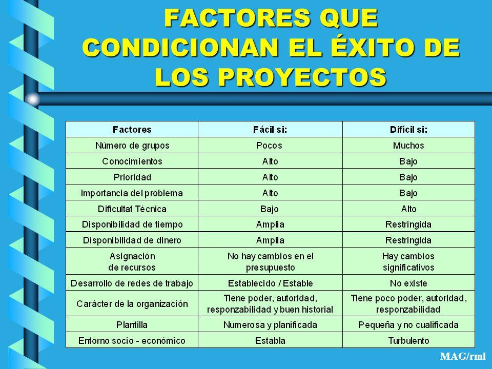 FACTORES QUE CONDICIONAN EL ÉXITO DE LOS PROYECTOS