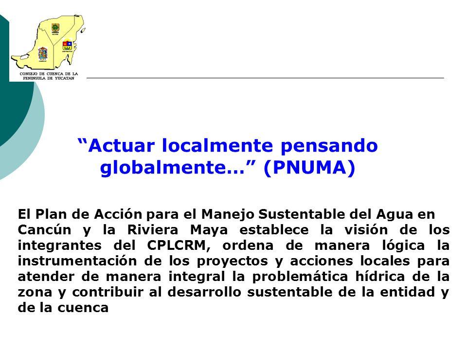 Actuar localmente pensando globalmente… (PNUMA)