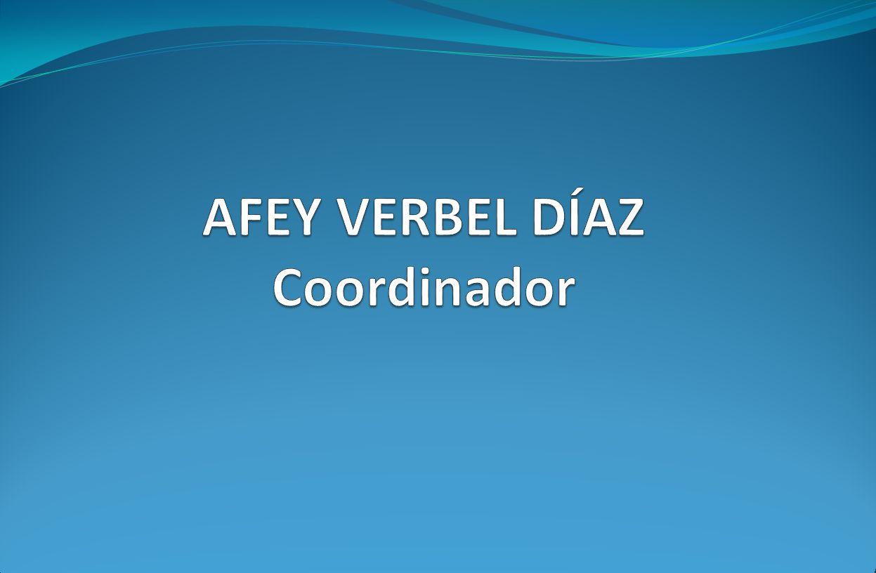 AFEY VERBEL DÍAZ Coordinador