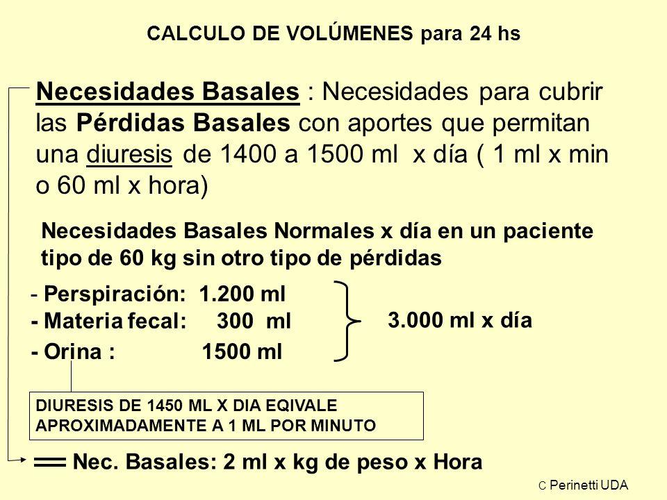 CALCULO DE VOLÚMENES para 24 hs