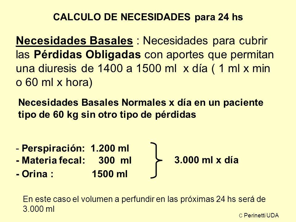 CALCULO DE NECESIDADES para 24 hs