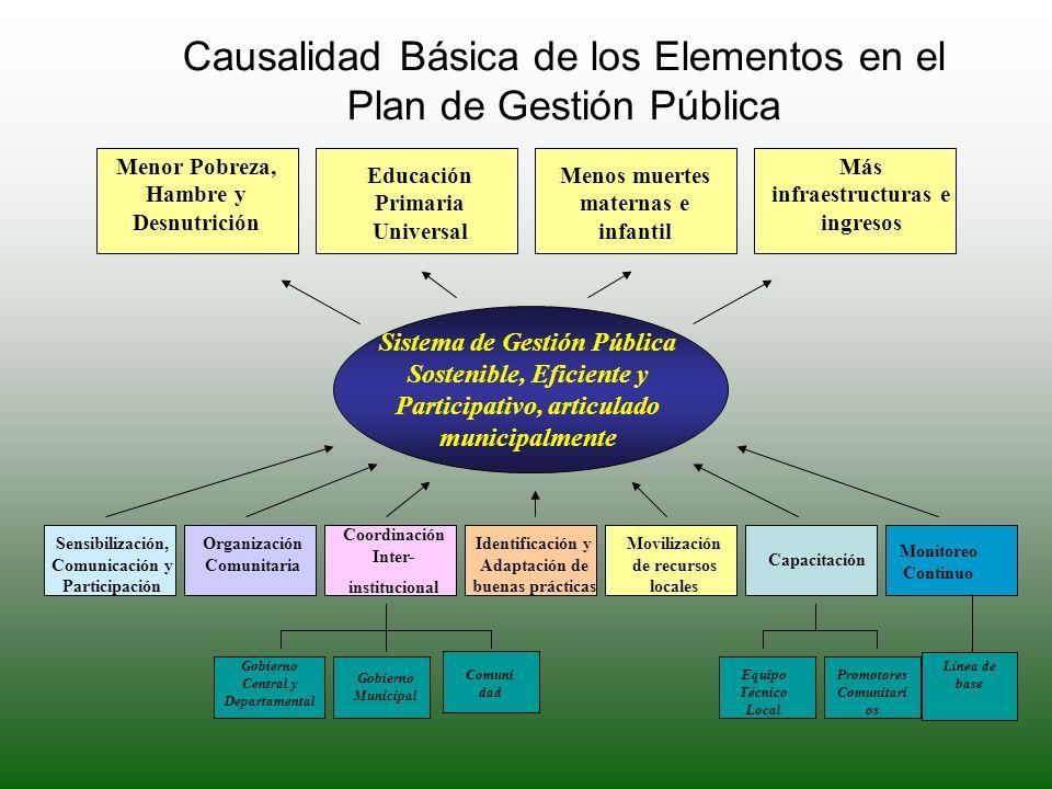 Causalidad Básica de los Elementos en el Plan de Gestión Pública