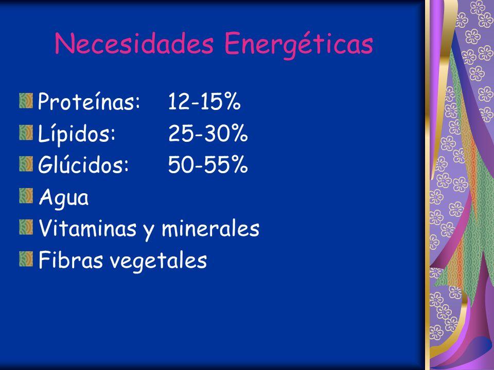 Necesidades Energéticas
