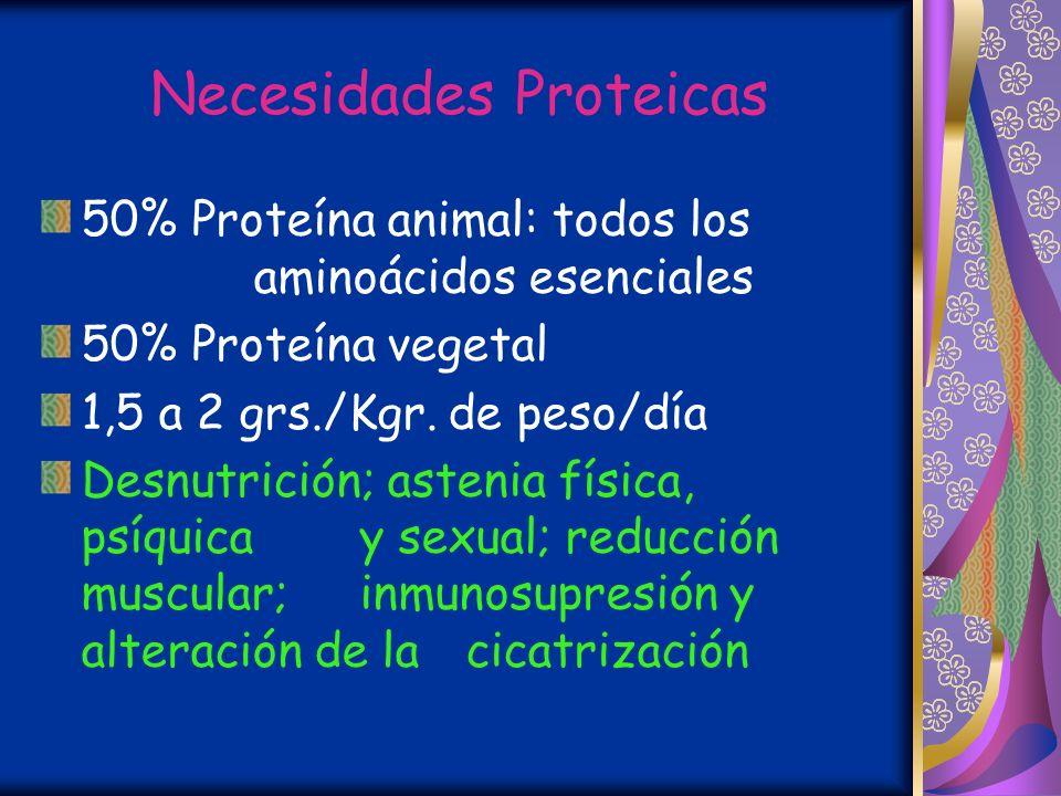 Necesidades Proteicas