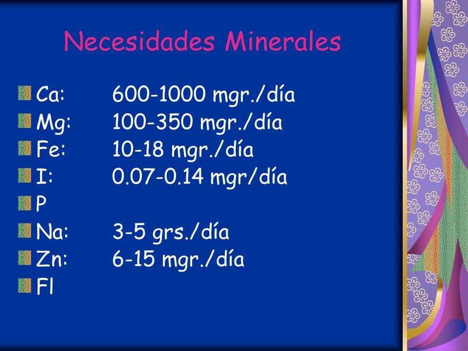 Necesidades Minerales