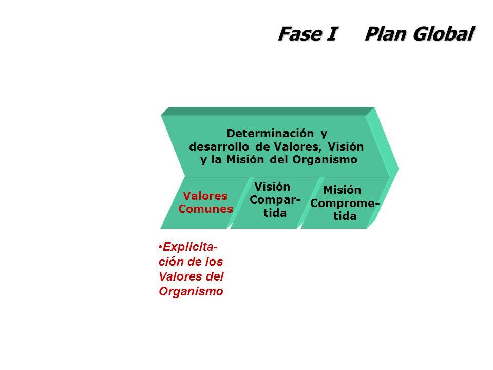 desarrollo de Valores, Visión y la Misión del Organismo