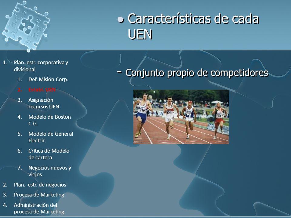 Características de cada UEN