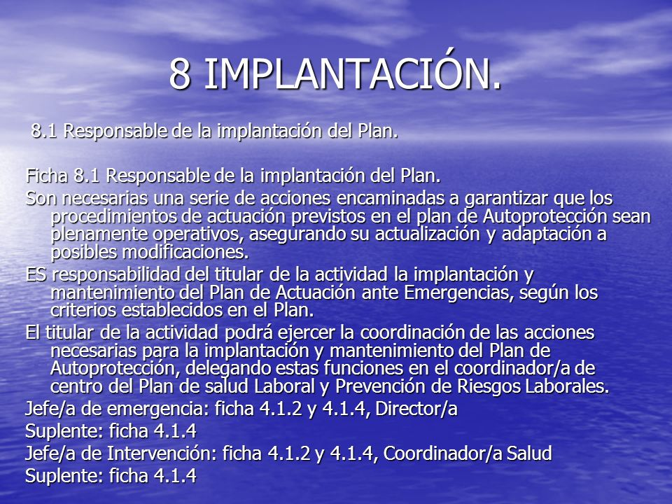 8 IMPLANTACIÓN. 8.1 Responsable de la implantación del Plan.