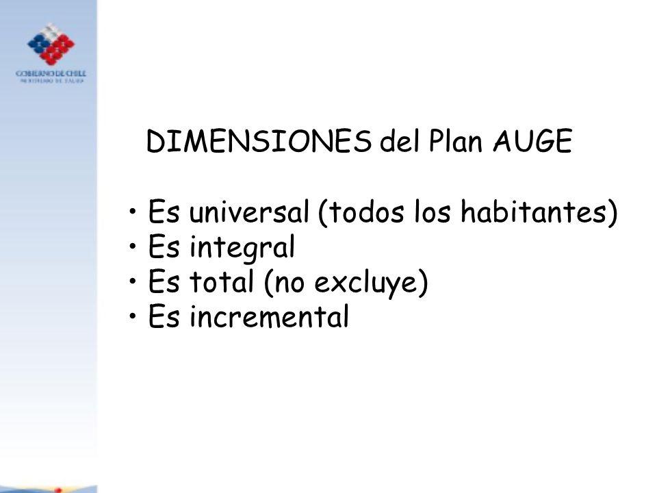 DIMENSIONES del Plan AUGE