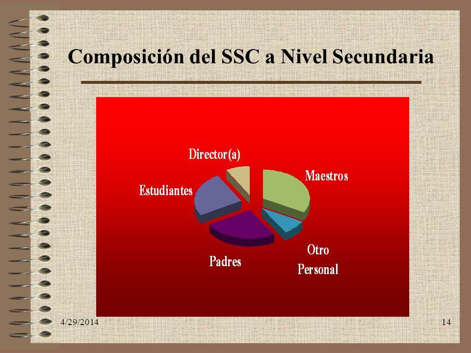 Composición del SSC a Nivel Secundaria