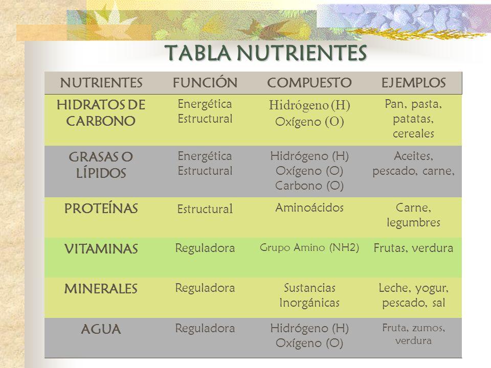 TABLA NUTRIENTES AGUA MINERALES VITAMINAS PROTEÍNAS GRASAS O LÍPIDOS