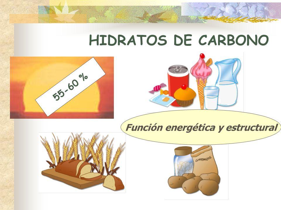 Función energética y estructural