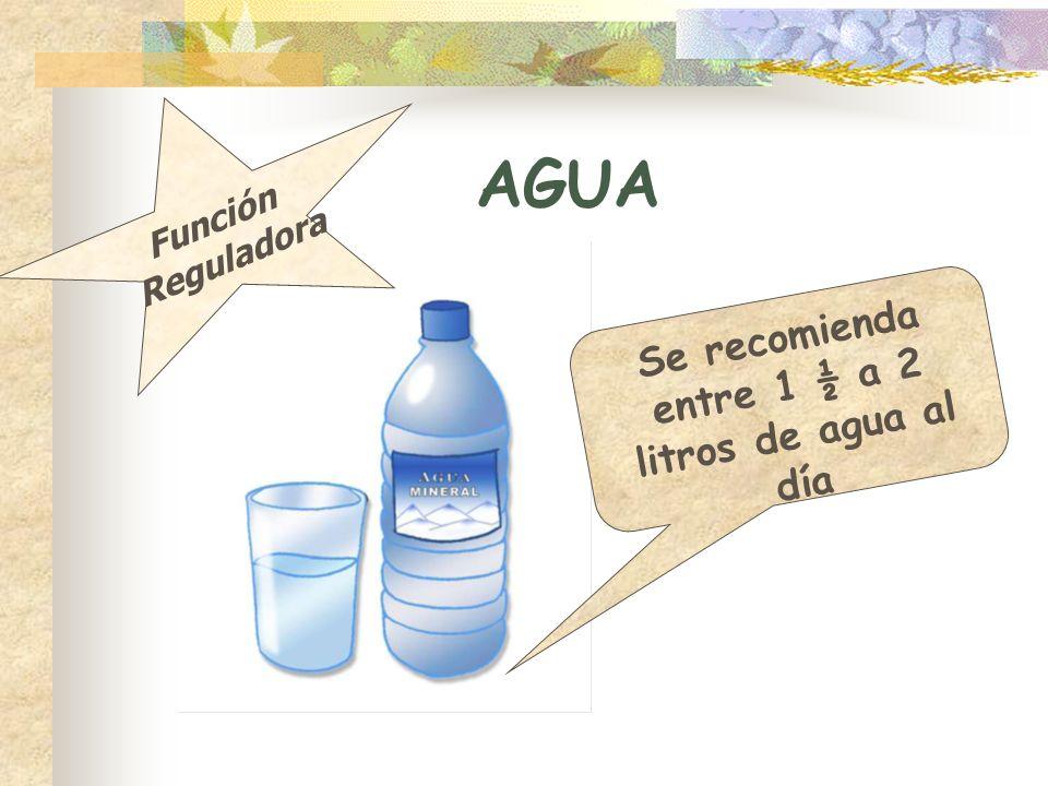Se recomienda entre 1 ½ a 2 litros de agua al día