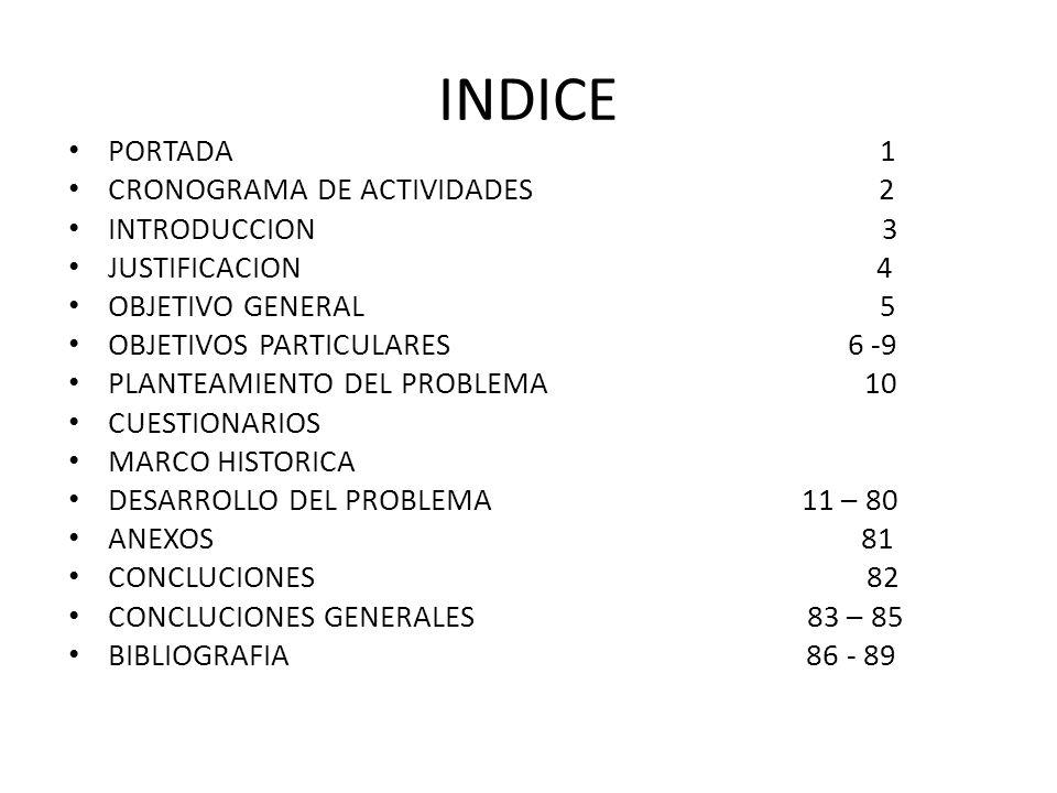 INDICE PORTADA 1 CRONOGRAMA DE ACTIVIDADES 2 INTRODUCCION 3