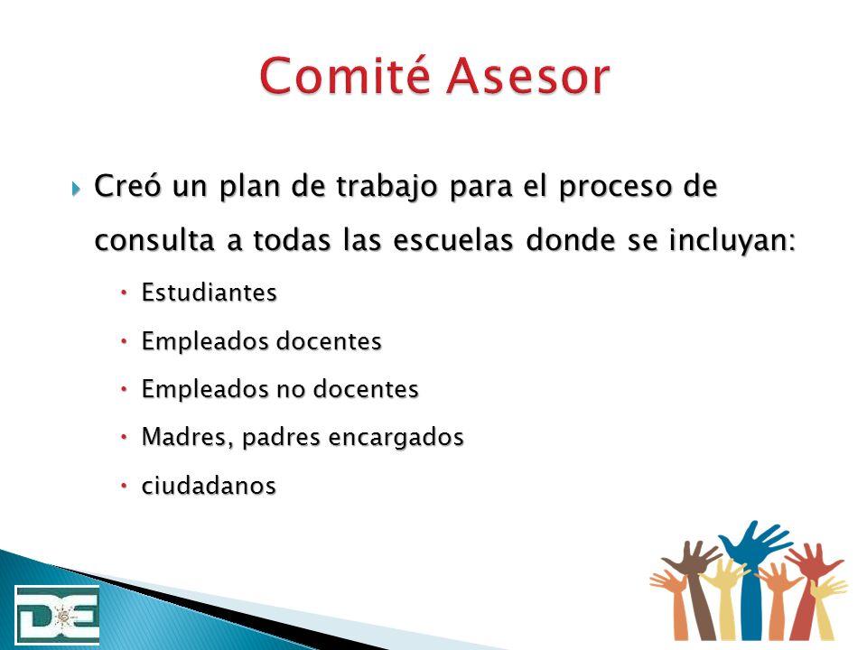 Comité Asesor Creó un plan de trabajo para el proceso de consulta a todas las escuelas donde se incluyan: