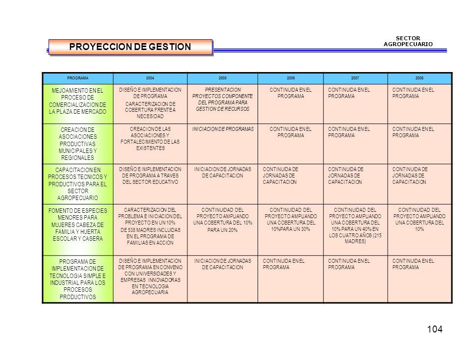 SECTOR AGROPECUARIO PROYECCION DE GESTION. PROGRAMA. 2004. 2005. 2006. 2007. 2008.