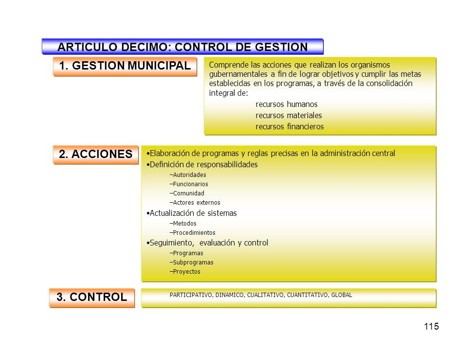 ARTICULO DECIMO: CONTROL DE GESTION